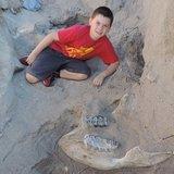 10-річний хлопчик знайшов рештки тварини, яка жила мільйон років тому