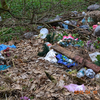 У Луцьку замість дитячого містечка - сміттєзвалище