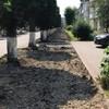 У Луцьку розпочали ремонт вулиці Шухевича