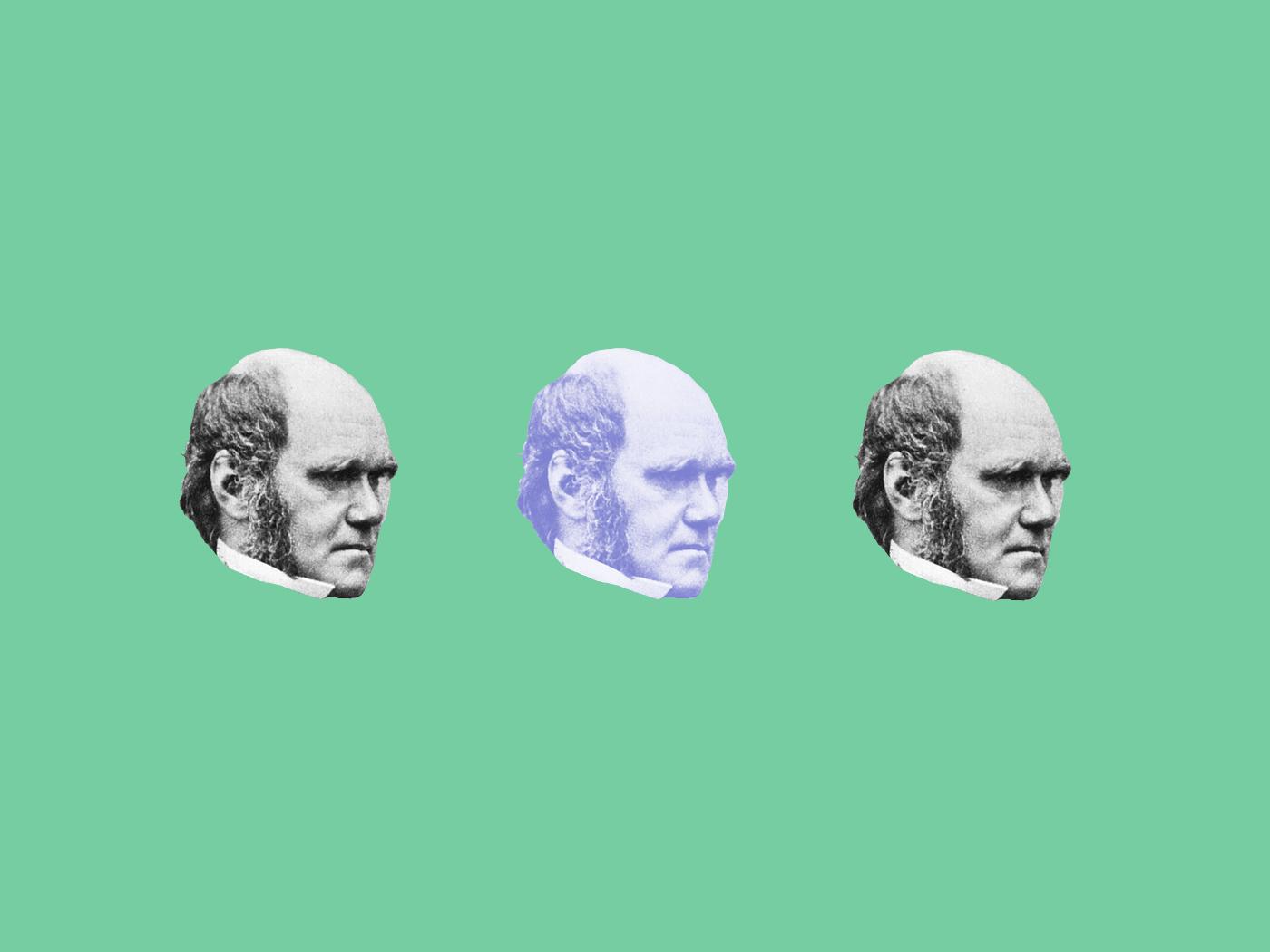 Хто надихнув Дарвіна?