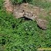 Забудову історичних підземель у Луцьку таки намагаються «проштовхнути»