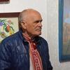 Картини Василя Парахіна вразили лучан своєю наївністю та глибиною. ФОТО