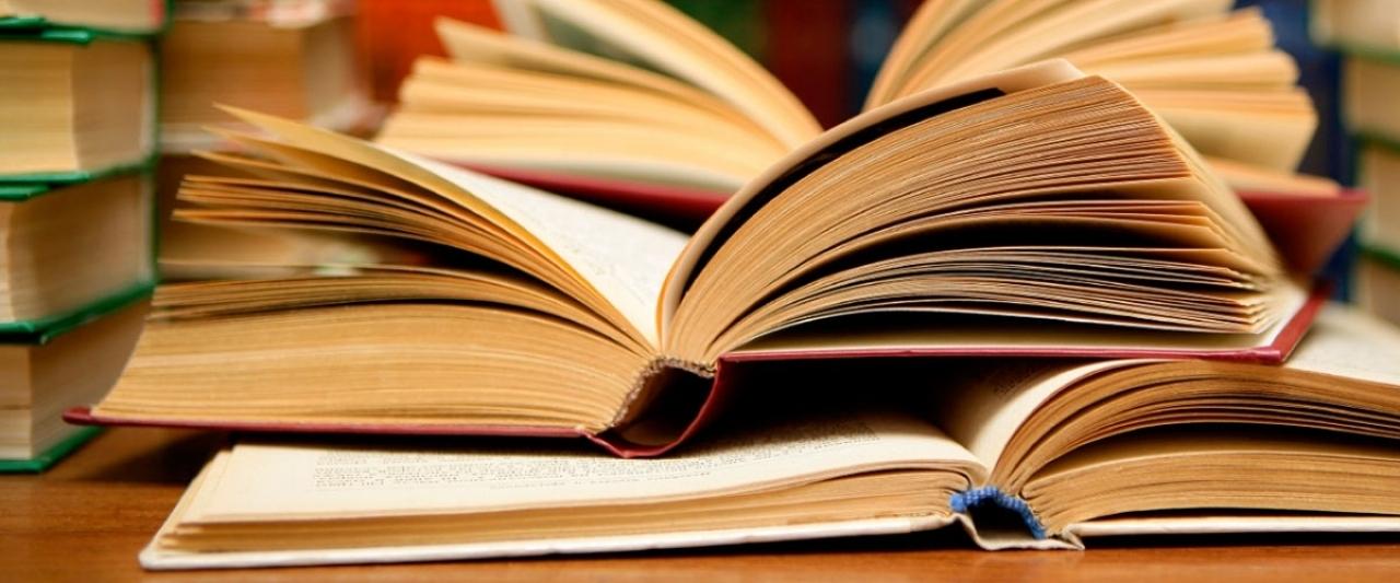 П'ять копійок: Які книжки читають лучани?
