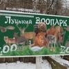 У Луцькому зоопарку згорів дах вольєра