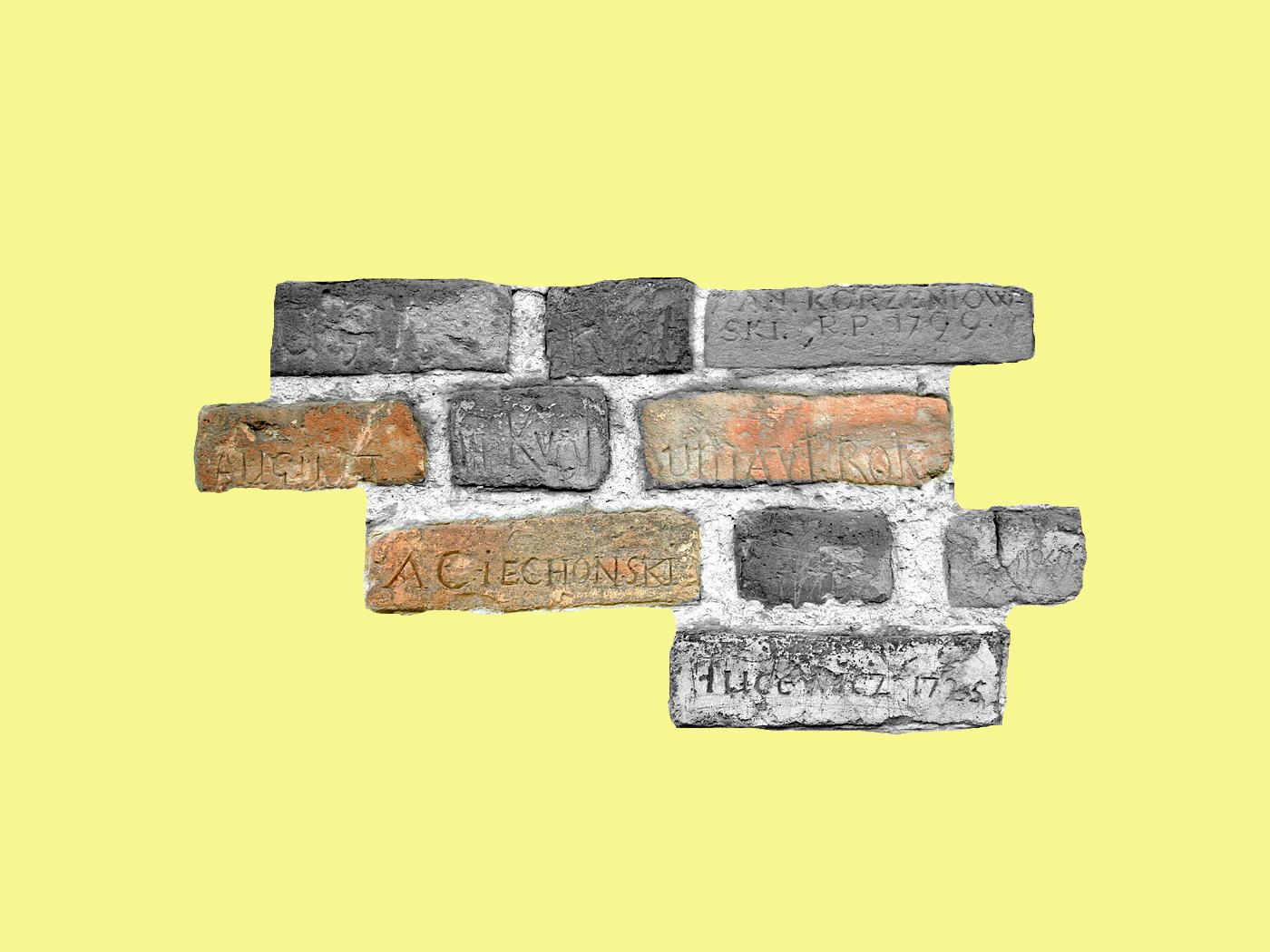 Шкребти на манівці: вікові автографи на стінах замку Любарта