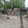 У луцькому парку демонтували «сільське господарство»