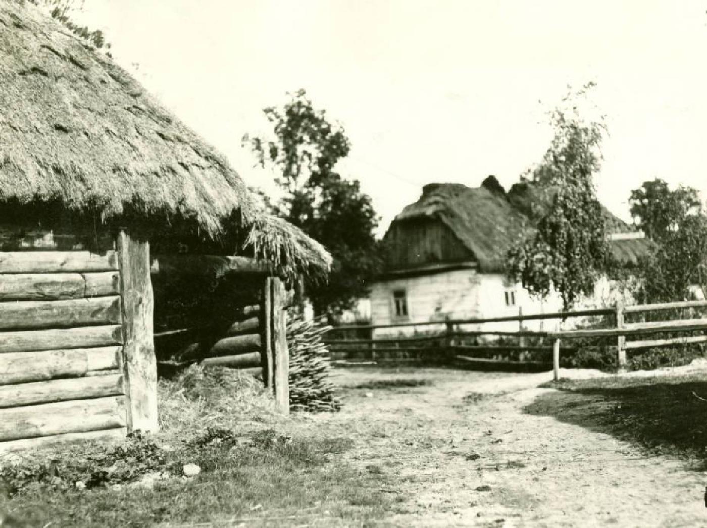 Гіндюкало й Одарочка: оригінальні клички свійських птахів на Волині