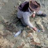 Гігантські сліди в печері пів століття не давали спокою