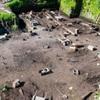 В Ізраїлі розкопали величезний винний завод хрестоносців