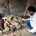 У Єгипті археологи знайшли гробницю з муміфікованими кішками і жуками