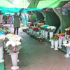 Квітковий ринок з центру міста пропонують перенести на стоянку Луцькради