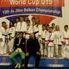 Луцькі спортсмени завоювали три медалі на чемпіонаті світу з джиу-джитсу