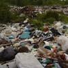 Туристичній зоні Волині загрожує сміттєвий колапс