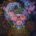 Її картини вразили світ: найяскравіша українська художниця Катерина Білокур