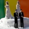 Уряд хоче легалізувати одностатеве партнерство