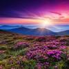 20 фотографій, які демонструють неймовірну красу України