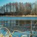 Краса річки Конопельки в об'єктиві волинського фотографа