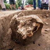 Будівельники натрапили на череп, якому понад 6 тис. років