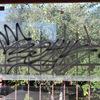У Луцьку невідомі пошкодили пілон та розмалювали транспортні зупинки
