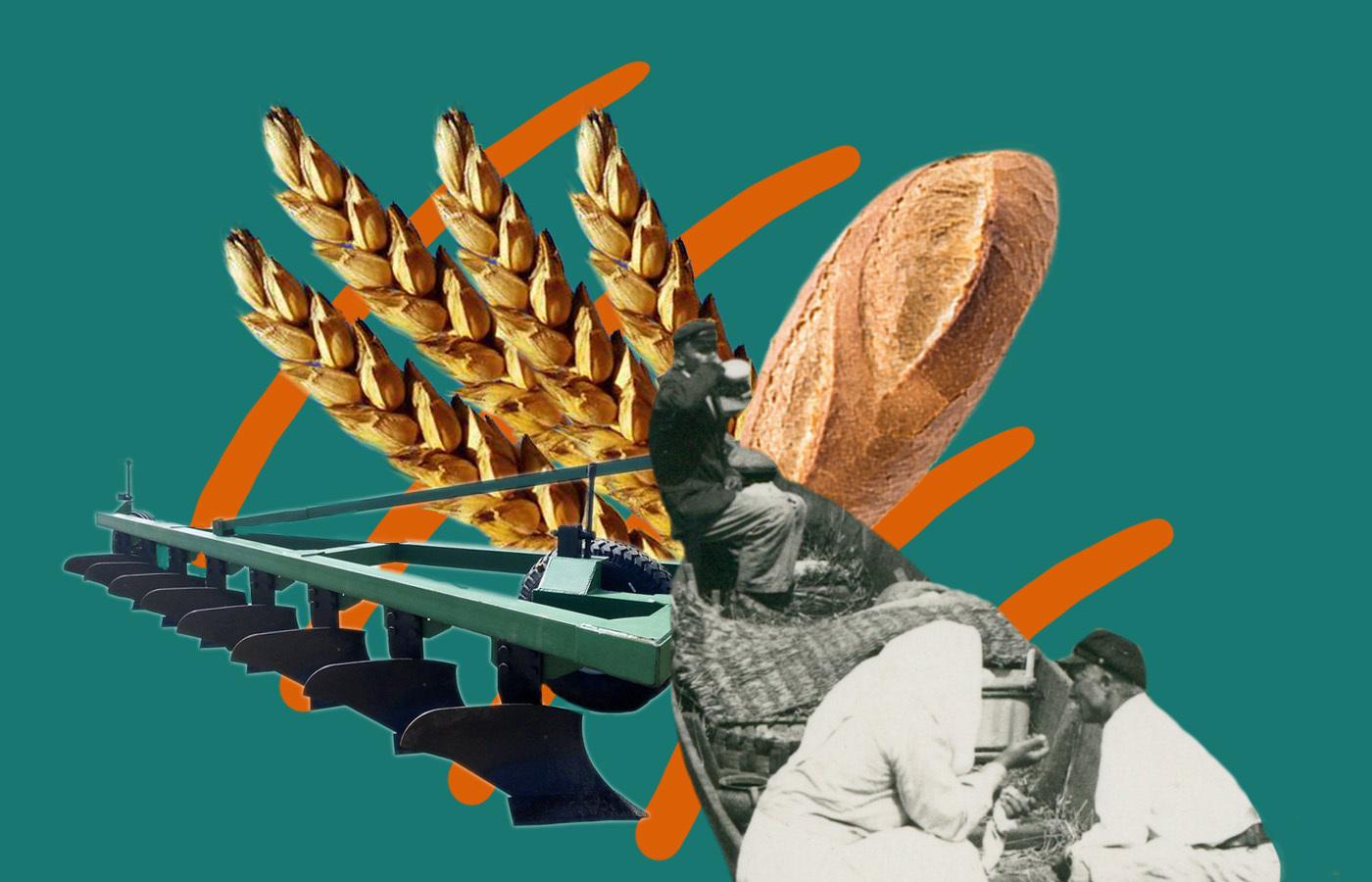 Як на Волині та Поліссі хлібом торгували 150 років тому