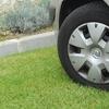 За паркування на газонах у Луцьку пропонують ввести жорсткі штрафи
