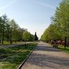 У лучан питають: якими вони бачать парки міста