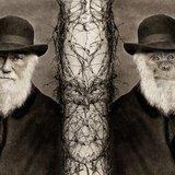 Чарльз Дарвін: англійський науковець, який створив теорію еволюції