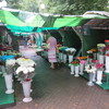 Квітковий ринок, що в центрі Луцька, перенесуть наприкінці вересня